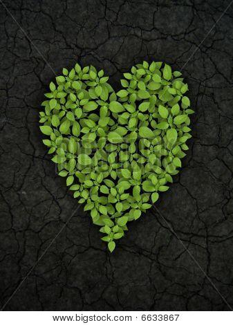 Green Plant Heart On Cracked Soil