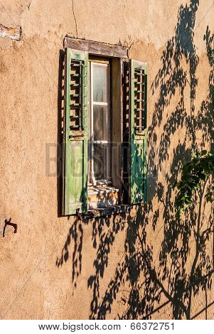 Window and shadow of a tree