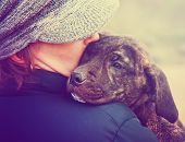 a girl holding a pit bull mix puppy done with a retro vintage instagram filter  poster