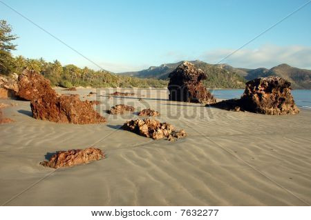 Beach At Cape Hillsborough