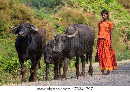 AMRITAPURI, KERALA, INDIA - FEBRUARY 18, 2013: Main Amma's Ashram in the remote fishermen village in Kerala, India. Amma