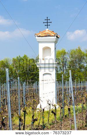 God's torture with vineyard near Palava, Czech Republic