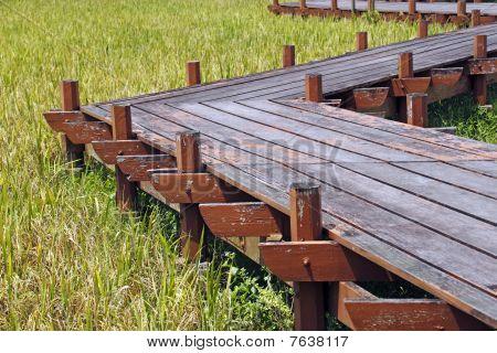 Rural zig-zag pathway