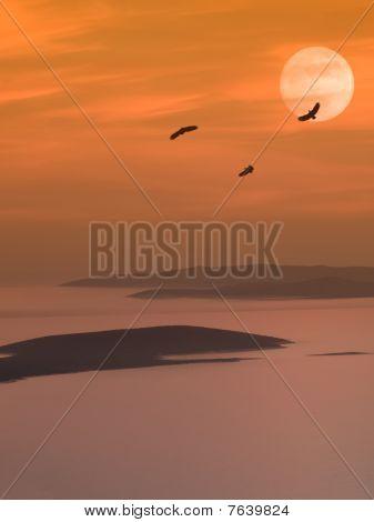 Eagles At Dusk