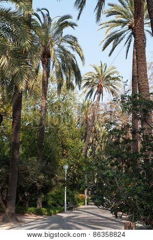 Parque de Malaga (Parque de la Alameda), Spain