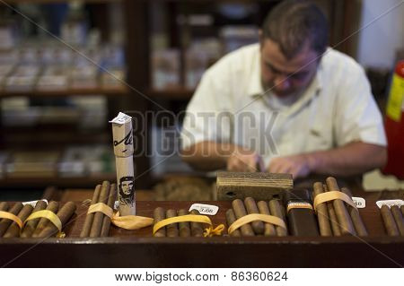 Vinales - February 19: Man Processing The Tobacco Leaves And Making Cigars With Simple Tools On Febr