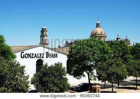 Gonzalez Byass Bodega, Jerez de la Frontera.