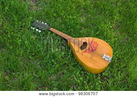 Mandolin lost in spring grass