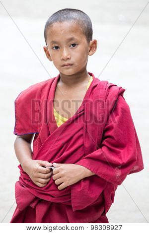 Young Tibetan Buddhist Monk, Dharamsala, India