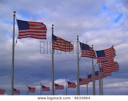 Flags in Wind