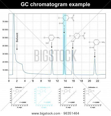 Gc Chromatogram Example