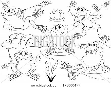 Vector black and white cute frogs, butterfly, dragonfly, pond, lily