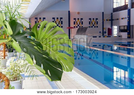 Interior of a swimming pool