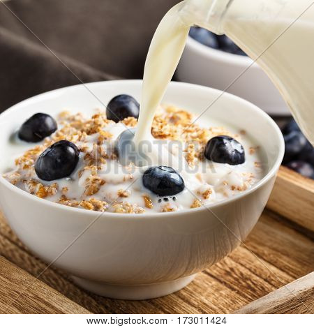 Cereals with nuts fresh blueberries and milk.