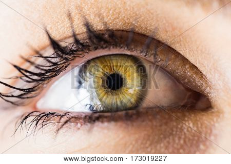 Close-up of beautiful woman eye against white background