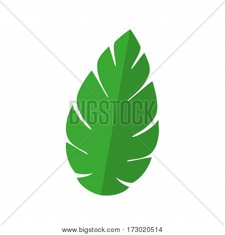 green leaf nature plant icon vector illustration