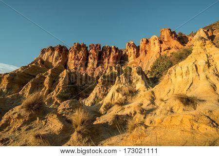 The sandstone cliff in Black rock beach at Melbourne, Australia.
