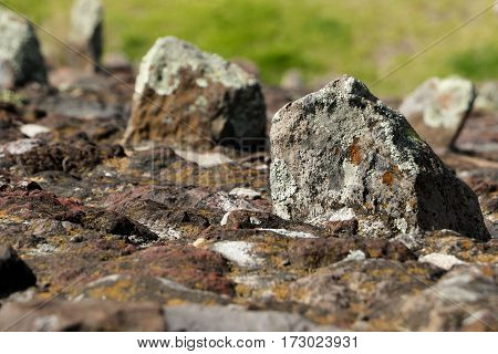 A rock full of beautiful textures in a mountain