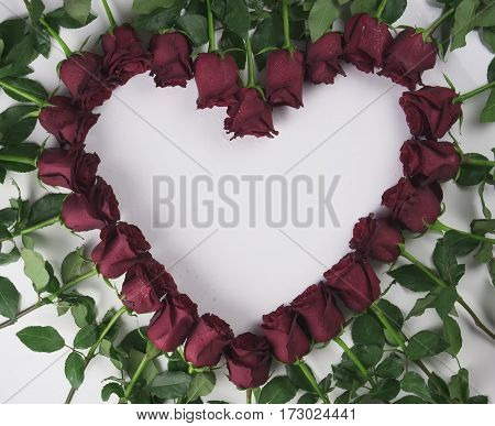 Frame in the form of a heart of red roses with water droplets on a white background