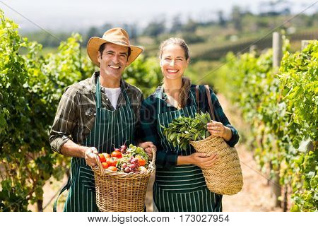 Portrait of happy farmer couple holding baskets of vegetables in the vineyard