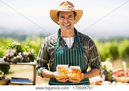 Portrait of a smiling farmer holding box of fruit at local market