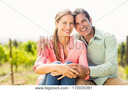 Portrait of happy couple sitting in vineyard on a sunny day