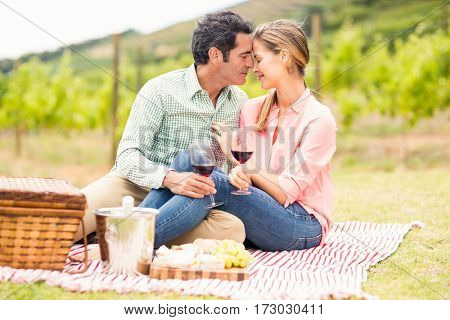 Happy couple holding glasses of wine in vineyard