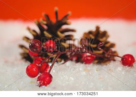 Pine cone and red cherry on snow during christmas time