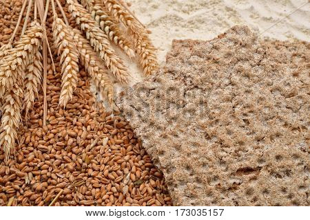 Wheat In Different Forms, Raw Or Processed. Healthy Organic Food. Selective Focus