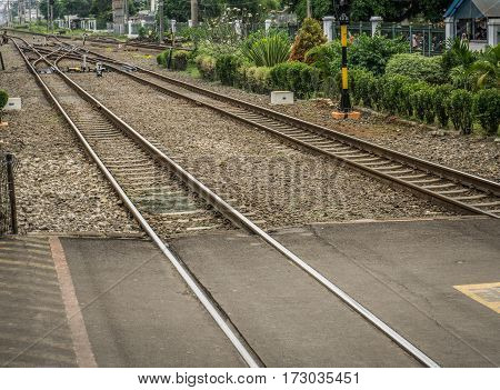 Crossing line for railways with bushes around photo taken in Depok Indonesia java