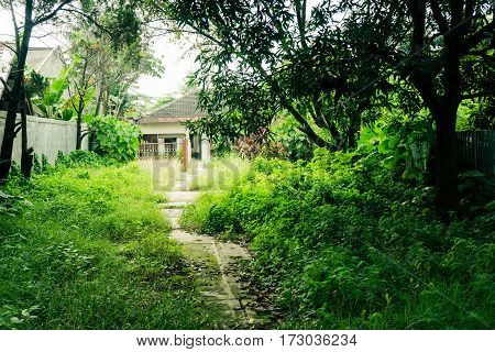A little pathway in the middle of grass yard direct to a house building surrounding by big trees photo taken in Depok Indonesia java