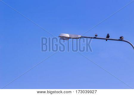 Street Light Pole and the blue sky