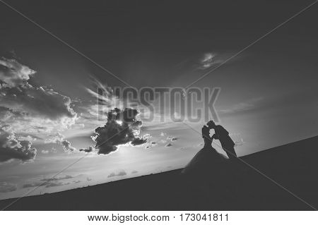 silhouette of a bride and groom in nature against the sky