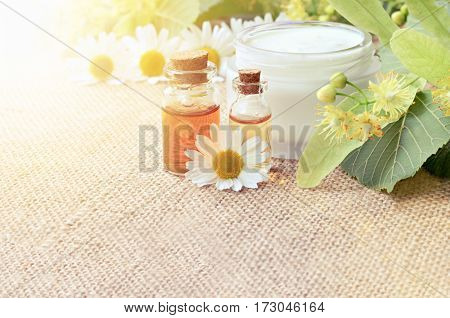Chamomile extract organic cosmetics. Bottle of essential oils, fresh holistic blossom, sunflare effect, soft focus.