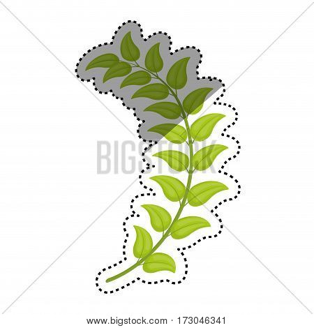Leaves nature ecology icon vector illustration graphic design