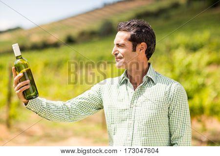 Smiling vintner looking at bottle of wine in vineyard
