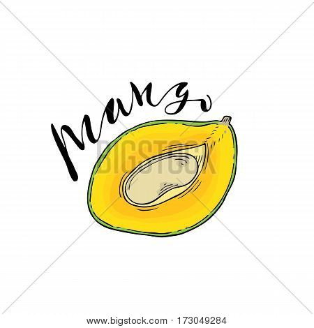 The cut fruit of mango on a white background with the word Mango. Lettering.