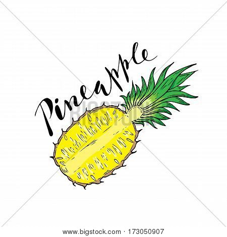 The cut fruit of pineapple on a white background with the word Pineapple. Lettering.