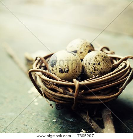 Easter eggs and nest on wooden background - Easter composition