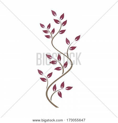 Natural ornamentation with pink ivy on white background