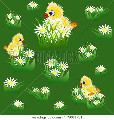 Seamless pattern with little funny yellow chicks and chamomiles in grass. Vector illustration