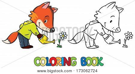 Coloring book of funny little baby fox with watering can and flower. Children vector illustration
