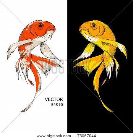 11 Fish.eps