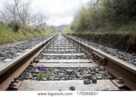 A photo of a landscape and a rail way