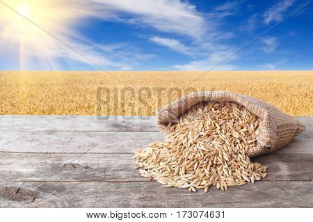 Grains of oat on wooden table with field on the background. Ripe field, blue sky with beautiful clouds and sun. Uncooked porridge. Grain oats with husk in burlap bag. Cereal grains