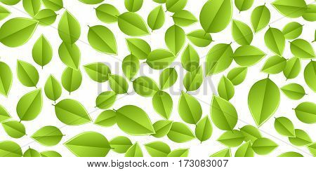 green seamless leaves isolated on white background. vector illustration