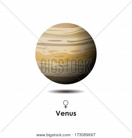 Vector Venus on white background with symbol