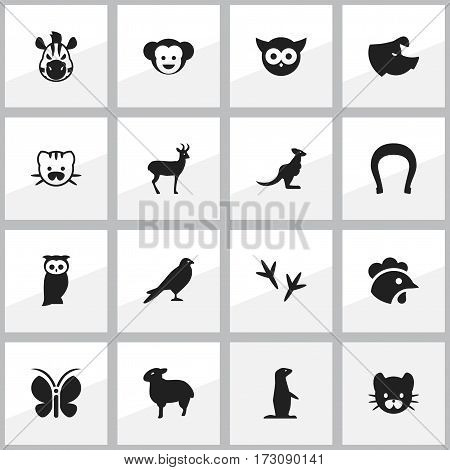 Set Of 16 Editable Nature Icons. Includes Symbols Such As Talisman, Owl, Sow And More. Can Be Used For Web, Mobile, UI And Infographic Design.