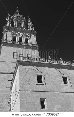 Salamanca (Castilla y Leon Spain): exterior of the medieval cathedral: belfry. Black and white