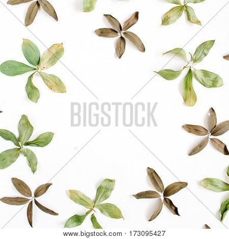 Frame of flowers branches leaves and petals on white background. Flat lay top view pattern